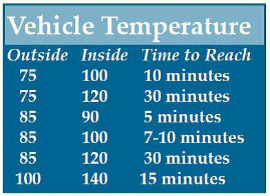 article_dogs_in_hot_car_temps