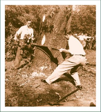 History Men Cutting Tree
